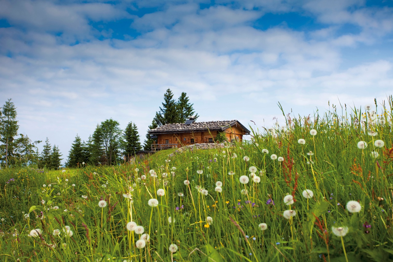 A typical hut in the Bavarian mountains
